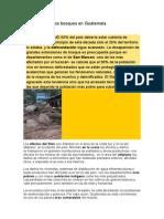 Situaciones de Los Bosques en Guatemala
