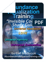 Abundance Visualization Training Invisible Council