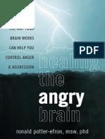 Healing the Angry Brain