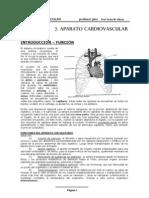 AP Cardiovascular