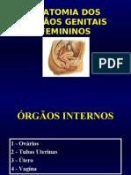 ER Urogenital