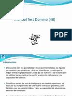 Manual Test Domino (48)