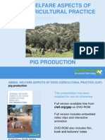 Gap Pigs Pps