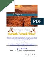 Parashat Pinjás # 41 Adul 6014