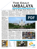 the daily jambalaya 1