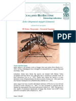 Aedes Aegypti - Profile May 07