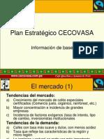 Plan Estrategico Cecovasa