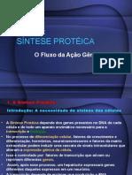 Aula 10 Sintese proteica