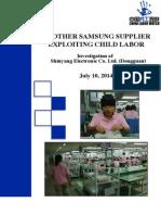 China Labor Watch - Shinyang Electronics