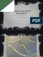 Taenia Solium e Saginata