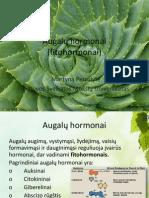 Augalų hormonai