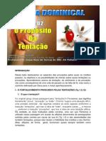 Licao 2 - Subsidio - O Proposito da Tentacao.docx