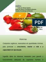 Aula de Vitaminas e Minerais