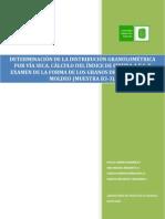 Informe Moldeo Indice de Finura AFS