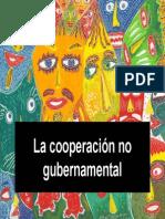 Cooperacion No Gubernamental