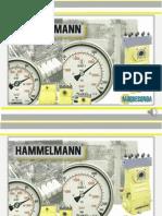 Apresentação_Hammelmann.pptx