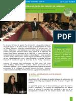 boletin - 3ra reunion GDMDS 2010.pdf