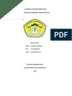 Laporan Praktek Survey Profil Memanjang