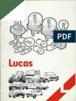 Lucas Bulbs