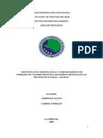 Proyecto Forrajeo de Aves. Actualizado Para Imprimir