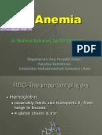 Anemia I , blok hematologi , fk umsu 2013