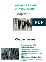 Ch 16 Employment Lsw (1)