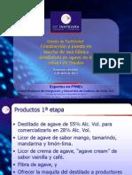 Estudio de Factibilidad Destilado Agave