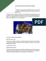 Oro y Métodos de Explotación y Gestión en Medio Ambiente