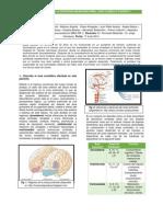 Caso Clínico N_3 Neuro
