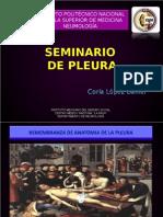 Seminario de Plaura y Derrame Pleural