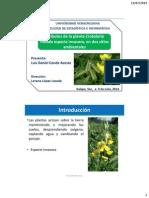 PresentacionTesisDC