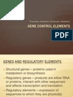 Gene Control Elements