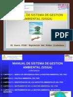 Enfoque Sistemico de La Gestion Ambientaldel FISE 26 NOV 2009