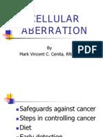 57918152-34316408-Cellular-Aberrations
