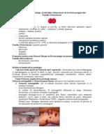 Diagnosticul de Laborator in Infectii Cu Neisserii Patogene