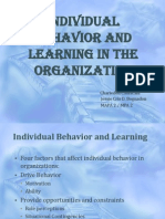 INDIVIDUAL BEHAVIOR AND LEARNING IN the ORGANIZATION