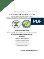 Proyecto de Inversion Negocio de Nectares de Frutas Amazonicas
