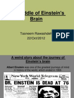 The Riddle of Einstein's Brain