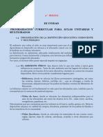 11,Programacion Curricular en Aulas Unitarias y Multigrados