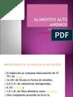 Productos Alto Andinos. Tuberculos