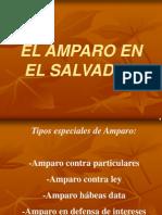 Presentacion AMPARO