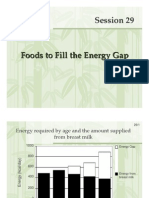 Session 29 Foods to fill the energy gap