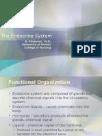 ENDOCRINE SYSYTEM