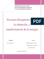 Procesos Bioquímicos Para La Obtención y Transformación de La Energía