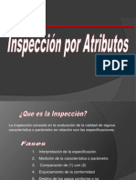 inspeccic3b3n-atributos