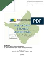 Relatório Técnico_Situação Da BR-156 Trecho Sul
