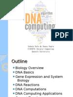 Computing With DNANov28th2009