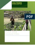 Plan de Mkt Credito Agricola