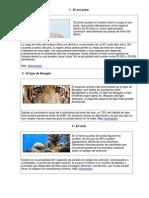 animales en peligro de extincion y cinco animales extintos.docx