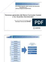 Marco Curricular Común_Alonso_Fernandez.pdf